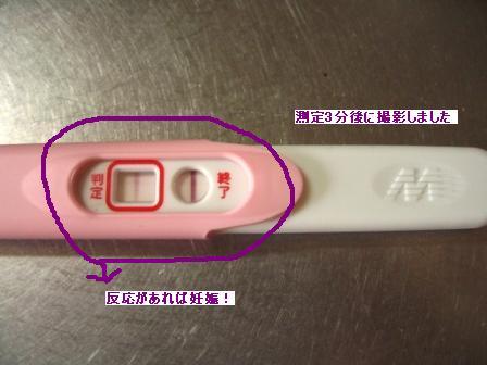 【妊娠体験記】三人目妊娠2か月~今回はふってわいた妊娠