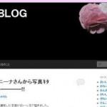 「ウレル女BLOG」(みちるさん)