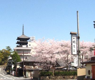 パーキングから興福寺五重塔が見える