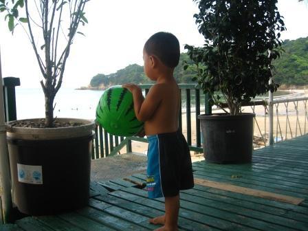 海を見つめる次男坊