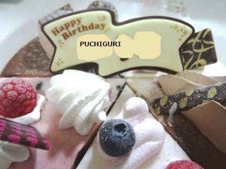 puchi904