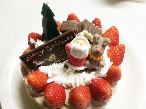 にゃんこ一家のクリスマス2015~サンタさんにお礼のクッキー