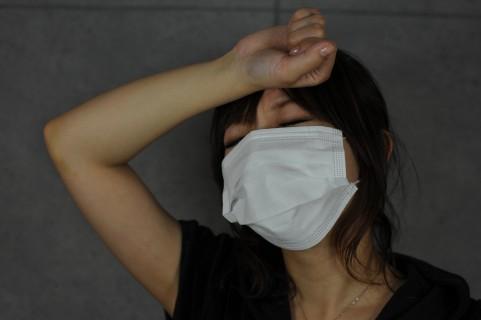 インフルエンザ旋風、にゃんこ一家も大荒れ中です