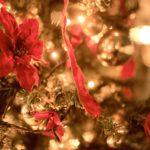 2016クリスマス~早起き過ぎた子どもたち