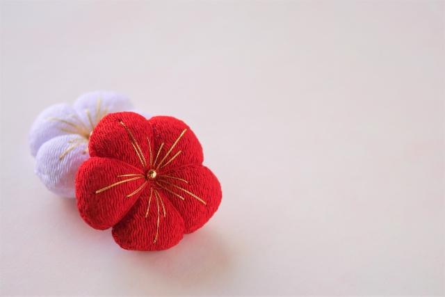 お正月ぽいお花